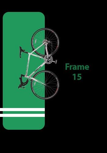 دوچرخه فریم 15