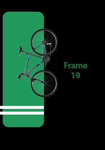 دوچرخه فریم 19