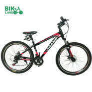 grand-ronix-bicycle-26